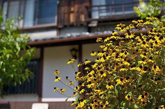 '12秋京都20.jpg