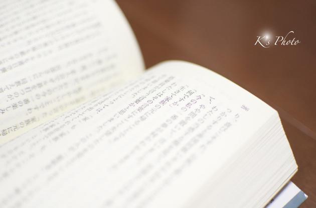 DSC_0005のコピー.jpg