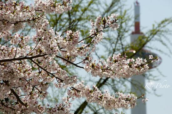 京都駅前2.jpg