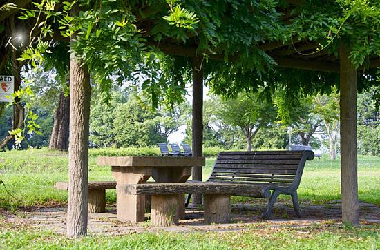 公園5.jpg