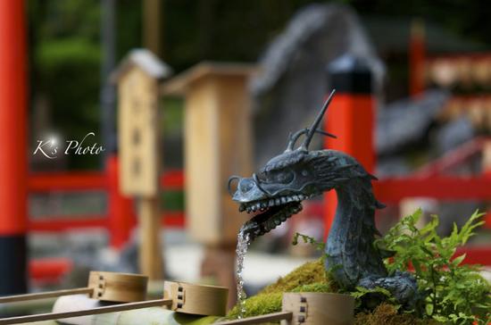 出雲 手水の龍.jpg