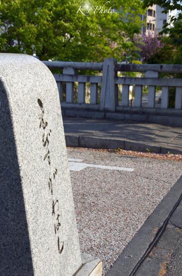 堀川通り1.jpg