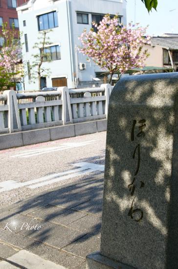 堀川通り8.jpg