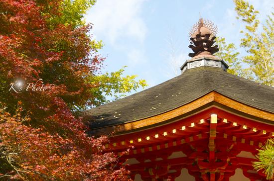 東福寺3.jpg
