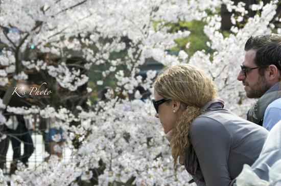 桜ふたり4.jpg