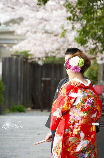 桜ふたり5.jpg