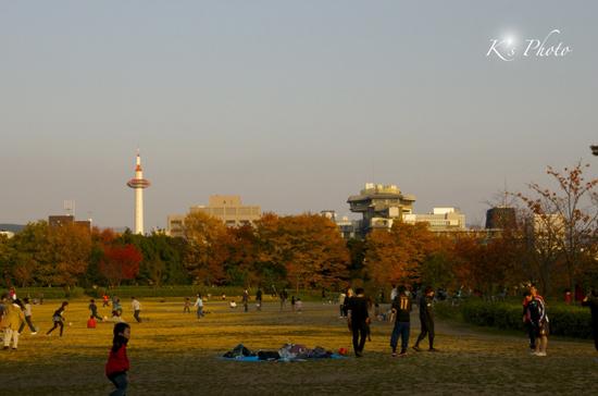 梅小路公園2のコピー.jpg