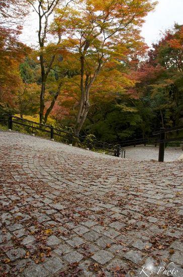石畳の坂.jpg