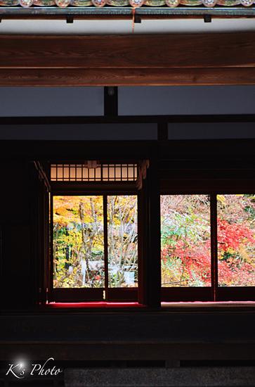 窓越しの紅葉.jpg